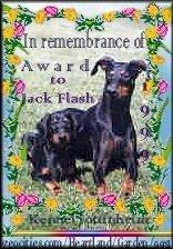 In Remembrance of Award