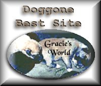 Doggone Best Site Award